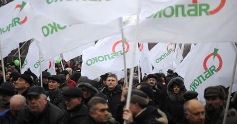 Ярославские политологи поведали, почему «Яблоко» сняли свыборов воблдуму
